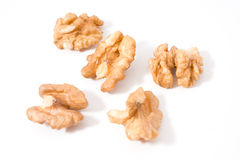 Walnut or nut core food Stock Photography