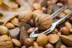Walnut and nut-cracker royalty free stock photo