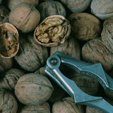 Walnut and nut cracker Stock Photography