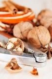 Walnut and nut cracker Stock Image