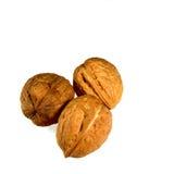 Walnut,nut,shell,organic Stock Photography