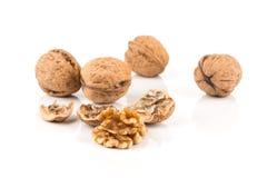 Walnut nut on white Stock Images