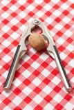 Walnut and nutcracker Stock Photography