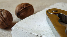 Walnut and Nutcracker. Detail view of two walnuts and a nutcracker Royalty Free Stock Images