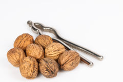 Walnut with nutcracker Stock Photography