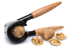 Walnut in a nutcracker with walnuts Royalty Free Stock Photo