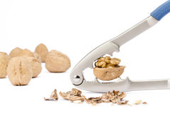 Walnut and nutcracker Royalty Free Stock Image