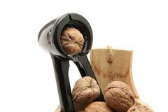 Walnut and nutcrackers Stock Photography