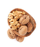 Walnut nuts royalty free stock photos