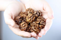 Walnut nuts in hands Stock Image
