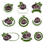 Walnut nuts labels and elements set. Vector Stock Photography