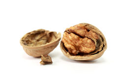 Walnut in Nutshell. On white background Stock Photography