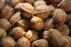 Walnut in nutshell Stock Photo