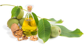 Walnut oil with ripe and unripe walnuts Stock Images