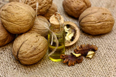 Walnut oil on vintage bottle and nuts coarse cloth sacking. Walnut oil and nuts on coarse cloth sacking royalty free stock photo