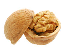 Walnut open Stock Image