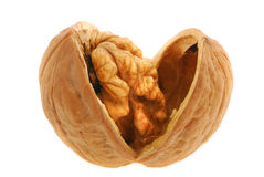 Walnut open isolated Stock Images