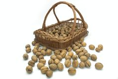 Walnut out of basket Stock Photo