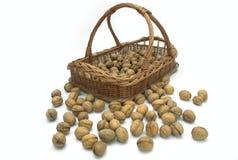 Free Walnut Out Of Basket Stock Photo - 6808820