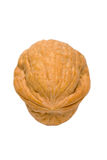 Walnut Over White Royalty Free Stock Photography