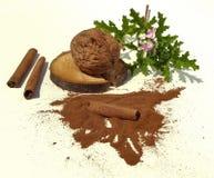 Walnut, pelargonium and cinnamon Royalty Free Stock Photos