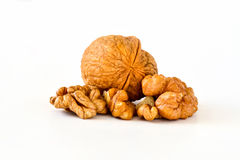 Walnut. Persian walnut (Juglans regia) nuts on a white background stock photos