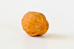 Walnut. Persian walnut (Juglans regia) nuts on a white background stock photo