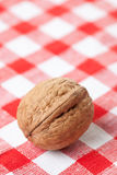 Walnut on picnic tablecloth Stock Photo