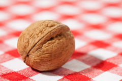 Walnut on picnic tablecloth Royalty Free Stock Image