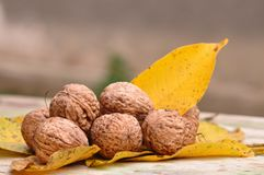 Walnut. Pile of organic walnuts. Macro detail Stock Photo