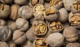 Walnut. A pile of walnut un covered some them Stock Images