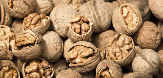 Walnut. A pile of walnut uncovered some of them Royalty Free Stock Image