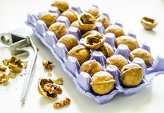 Walnut. In a purple egg cup and a nutcracker Royalty Free Stock Photography
