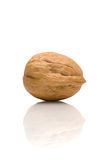 Walnut and Reflection Royalty Free Stock Photos