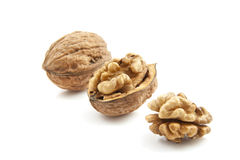 Walnut in a row Royalty Free Stock Photo