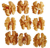 Walnut Row. Single walnut in rows isolated on white background Royalty Free Stock Images
