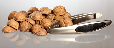 Walnut's nutshell and metal nutcracker Royalty Free Stock Image