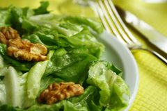 Walnut salad Stock Photography