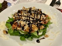 Walnut Salad with Mozzarella and balsamic Sauce Served at Restaurant. royalty free stock photos
