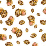 Walnut seamless pattern. Watercolor nuts wallpaper. For banner, card, poster, identity,web design Stock Images