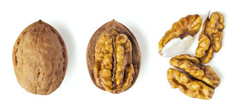 Walnut sectional Stock Photography