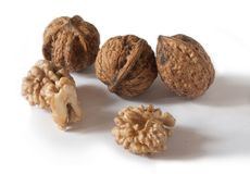 Walnut seed Royalty Free Stock Images