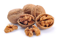 Walnut a shel Royalty Free Stock Photos