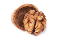 Walnut and shell Royalty Free Stock Photos