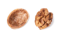 Walnut and shell Royalty Free Stock Images