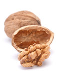 Walnut with shell Royalty Free Stock Photography
