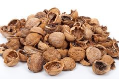 Walnut shell Stock Image