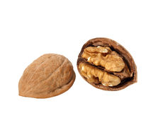 Walnut in Shell. Walnut Cracked Open in Shell on white stock photos