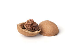 Walnut shell Stock Photography