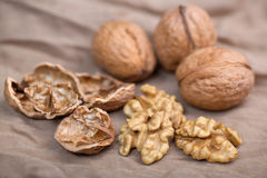 Walnut. Without shell close-up, and nuts in the shell Royalty Free Stock Photography